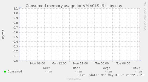 Consumed memory usage for VM vCLS (9)