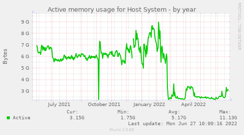 Active memory usage for Host System