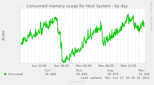 Consumed memory usage for Host System